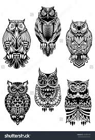 isolated owl birds in tribal style for mascot tattoo or wildlife