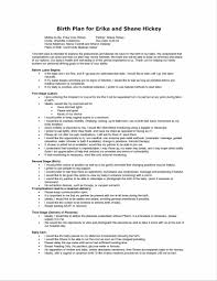 a professional the birth plans templates birth plan template can