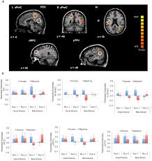 frontiers advice taking from humans and machines an fmri and