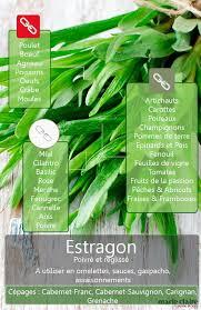 herbe cuisine comment utiliser l estragon en cuisine pouvoirs fait le et herbe
