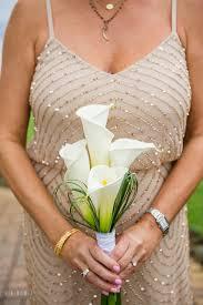 lowes wedding arches silver swan bayside wedding photos kent island maryland
