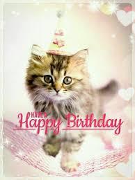 Happy Birthday Love Meme - 255 best happy birthday images on pinterest birthdays happy b