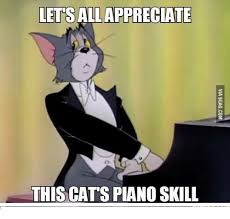 Cat Playing Piano Meme - lettsallappreciate this cats piano skill meme on me me