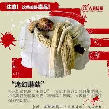 cuisine c駻us馥 三余草堂