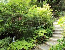 Leach Botanical Garden Explore Portland Oregon Leach Botanical Gardens