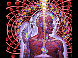 Picture Albums Tool Lateralus Full Album Youtube