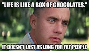 Fat Jokes Meme - life is like a box of chocolates it doesn t last as long for fat