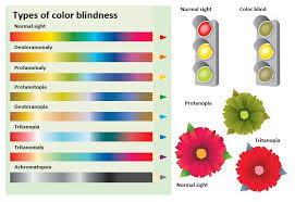 Deuteranopia Color Blindness Accessibility Testing Color Blindness