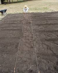 growing vegetables step by step how to start a vegetable garden