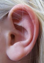 cancer of the ear cartilage otoplasty
