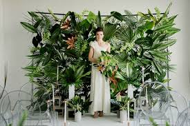 wedding backdrop green lush tropical wedding inspiration green wedding shoes