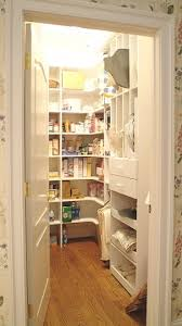 kitchen pantry design ideas 47 cool kitchen pantry design ideas shelterness intended for