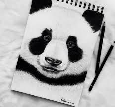 sketches for panda pencil sketches www sketchesxo com