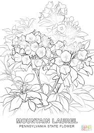 coloring pages printable coloring pages of flowers printable