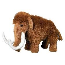 mammuthus woolly mammoth facts pictures space mercenary