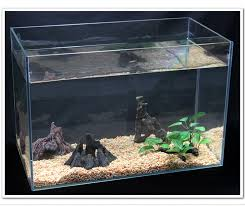 get cheap box turtle tank aliexpress alibaba