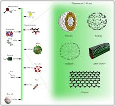 ijms free full text nanoinformatics emerging databases and