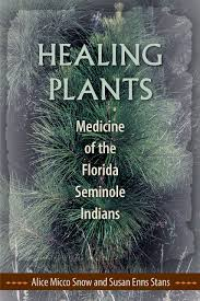 native american healing herbs plants healing plants medicine of the florida seminole indians alice