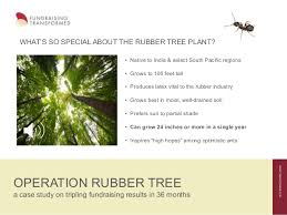 operation rubber tree a study on tripling fundraising results i