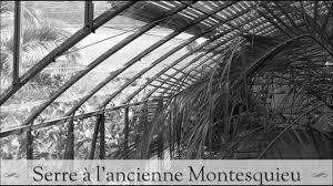 serre horticole en verre awesome serre de jardin style ancien images amazing house design