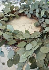 eucalyptus wreath easy eucalyptus door wreath