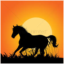 mustang horse running silhouette of horse running vector image 1438608 stockunlimited