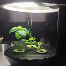 amazon black friday aerogarden i u0027m growing aerogarden gourmet herbs