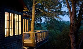 Treehouse Living Stay In A Tree In Sonoma County