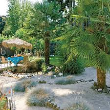 Best Backyard Beach Images On Pinterest Backyard Ideas Home - Backyard beach design