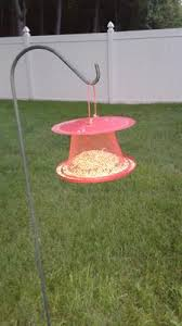 no no red cardinal wild bird feeder walmart com
