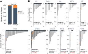 genomic and epigenomic heterogeneity of hepatocellular carcinoma