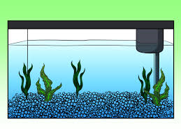 cartoon pictures of fish tank adultcartoon co