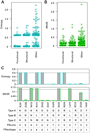 functional constraint profiling of a viral protein reveals