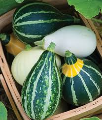 goose gourds how to grow gourds gardening tips and advice vegetable seeds and