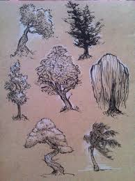 tree sketches art pinterest tree sketches trees and sketches
