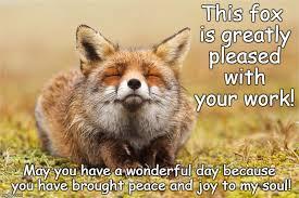 Inner Peace Meme - inner peace fox memes imgflip