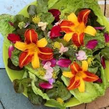 Salad With Edible Flowers - edible flowers tastespotting