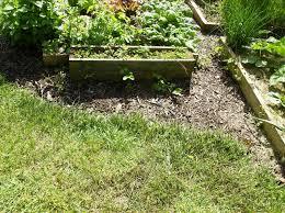 Vegetable Container Garden - the rusted vegetable garden