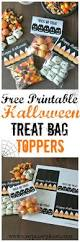 Halloween Gift Ideas For Toddlers by 1959 Best Kids Halloween Deco Images On Pinterest Halloween