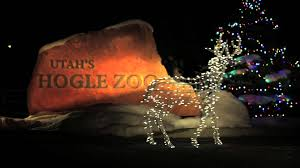 zoo lights at hogle zoo hogle zoo zoolights youtube