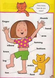 all about me lesson plan and worksheets for preschool and