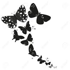 black butterfly design and abstract decorative flowers vector