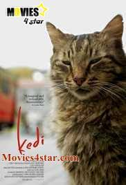 download kedi 2017 hdrip full free movie online from a secure