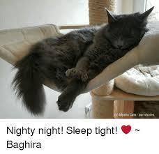 Nighty Night Meme - c mystic cats our stories nighty night sleep tight baghira