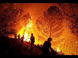 forestals black friday 2016 youtube the 25 best imagenes de incendios forestales ideas on pinterest