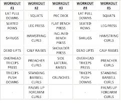 Weight Bench Workout Plan Bicep Workout Routine Bodybuilding