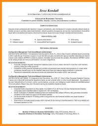 sales technical support resume entry level information technology