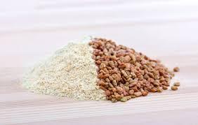 fenugrec cuisine comment moudre les graines de fenugrec