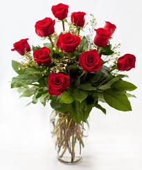 one dozen roses 12 dozen s day roses fort worth gordon boswell