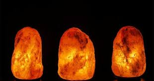 himalayan salt l recall amazon your salt l could be putting your cat s life in danger